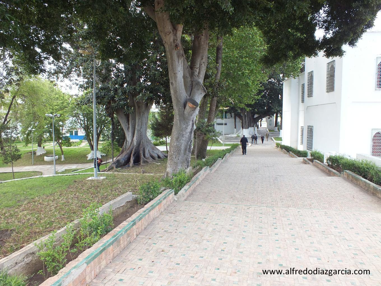 Jardines de la Mendoubia de Tanger